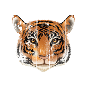 Tiger Lover Gift-Tiger Face-Tiger Look