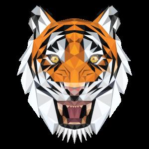Multi-Colored Tiger Face