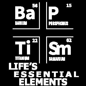 BaPTiSm | Die wesentlichen Elemente des Lebens - Christian