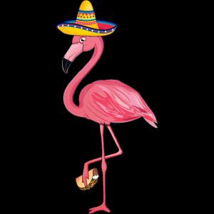 Cinco De Mayo Taco Dabbing Flamingo