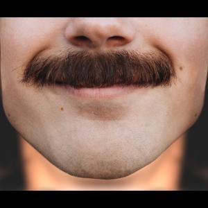 Max Schnauzer – Den Schnurrbart schnurren
