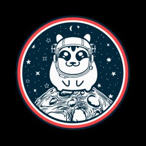 Hamster Im Weltall Planeten Astronaut Hamster Tier