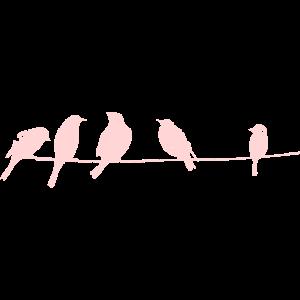 süße Vögelchen auf einem Kabel