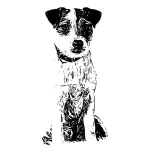 POSTER Parson Russell Terrier Hund Design Geschenk