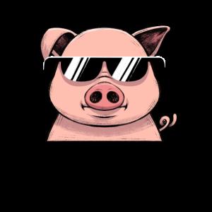 Cooles Schwein Sonnenbrille