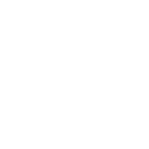 Life Essentials Coffee Book Cat Lover Funny Women