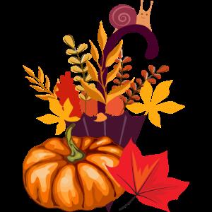 Herbst Kürbis Autumn