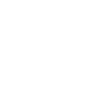 Drive Electric Fahr Elektronisch