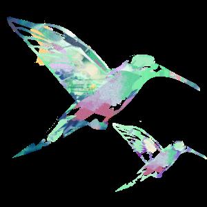 kolibri, aquarell, grün, Illustration,pastell