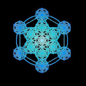 Detaillierte Metatron s Cube Sacred Geometrie TShi