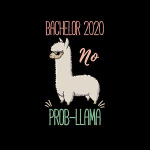 Bachelor 2020 no Prob-Llama Gesichtsmaske
