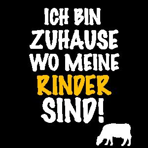 Rind, Rinder, Hochlandrind, Kuh, Kühe, Rinderbauer