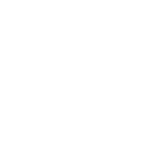NCD Logo von NCD Shirts