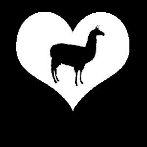 Lustig Llama Alpaka Pako Geschenk