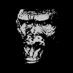 Junger Gorilla Silverback Gesicht Affengesicht