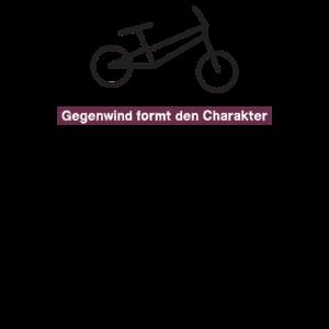 Fahrraeder Radler Fahrer Radfahrer Fahrzeug Farrad