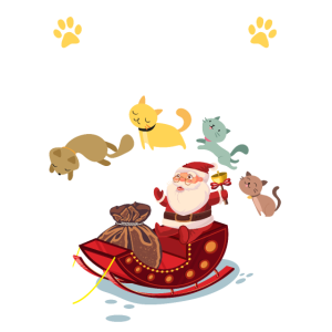 Cats For Everybody Funny Cat Lovers Christmas Gift