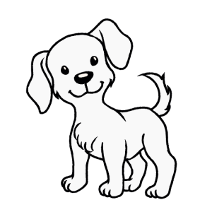 Hund Haustiere Hunde