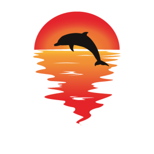 Delphin Delfin Dolphin Sonnenuntergang Romantik