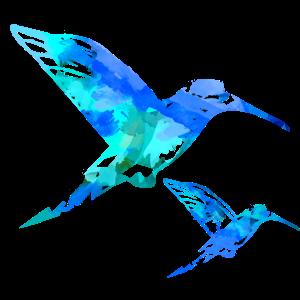 kolibri, aquarell, blau, Illustration,mint,vogel
