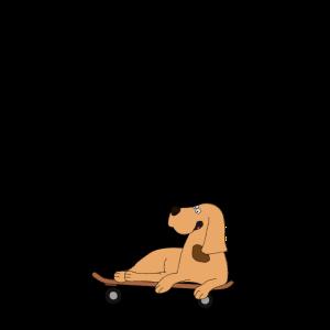 Babys erstes Jahr - Hund fährt Skateboard
