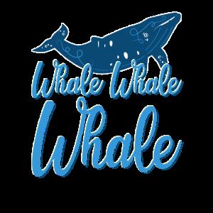 Meeressäuger Wal Orca Blauwal Wale Delfin