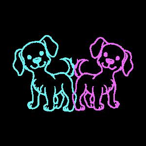 Haustiere Hund Hunde Tierheim Hundehalter