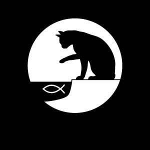 Katzenfisch neu Angeln