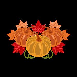 Face Mask Thanksgiving Pumpkin