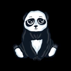 Süßer Panda Pandabär Niedlich