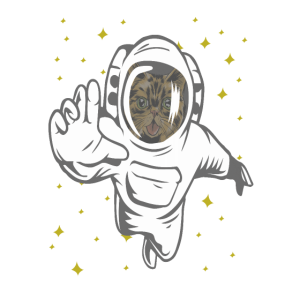 coole Astronauten, Weltall Katze