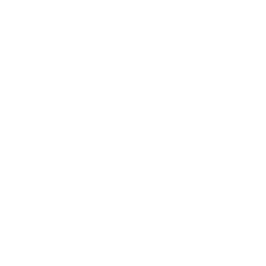 Evolution Equitation Blanc