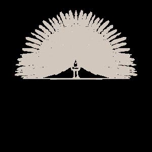 Pfau Indien