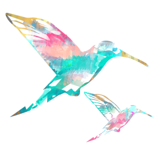 kolibri,aquarell,rosa,Illustration,zeichnung,vögel