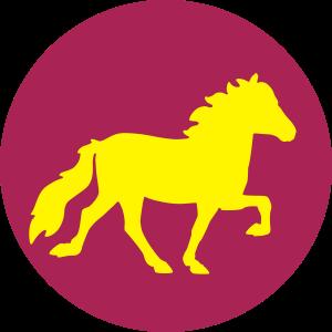 Pferd Kontur