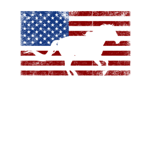 usa horse