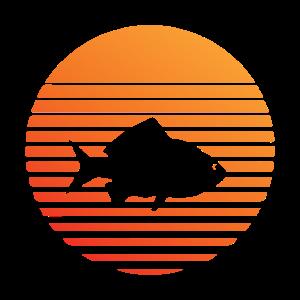Fisch -Silhuette im Sonnenuntergang