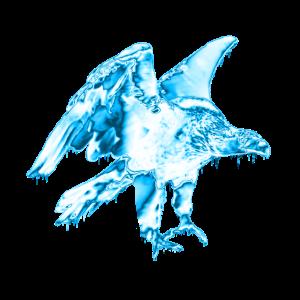 Steinadler - vogel - blau - eis - frost - winter