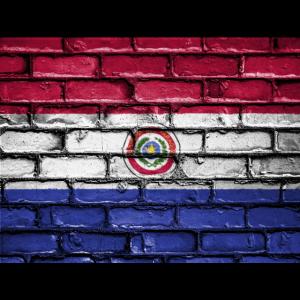 Nationalflagge Paraguay Tolles Geschenk