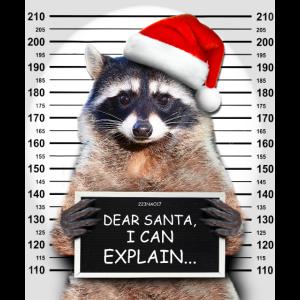 Dear Santa I Can Explain Funny Christmas Raccoon