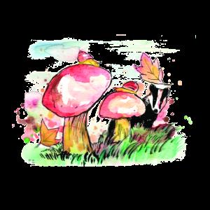 Pilze auf Wiese