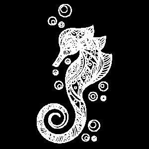 Seepferdchen Ozean
