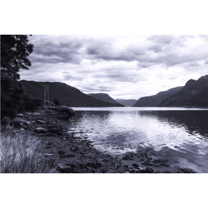 Einer von tausend Fjorden