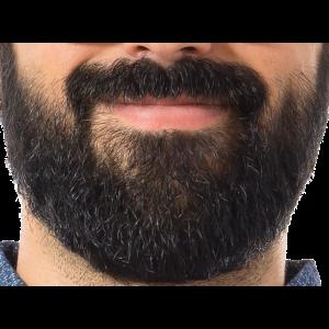 Bearded Guy Hipster