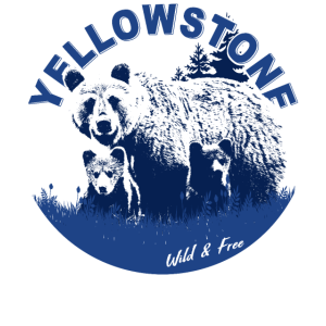 Yellowstone 3 Bears