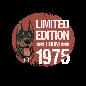 1975 geboren, Hund limitierte Edition Bday