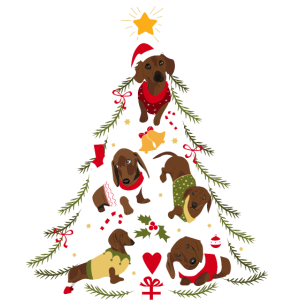 Dackel Weihnachtsbaum Hund Weihnachten