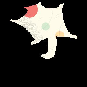 Kurzkopfgleitbeutler Seltenes Tier Australien