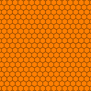 Corona Maske Gesichtsbedeckung Honigwaben Biene