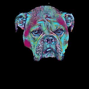 American Bulldog Retro puppy